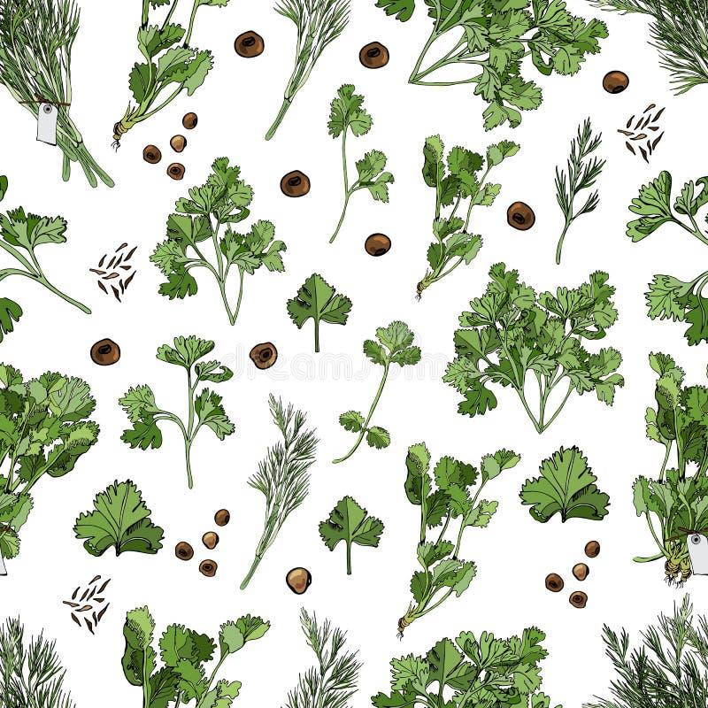 Modelo inconsútil de diversas hierbas y especias Tinta exhausta de la mano y bosquejo coloreado aislados en el fondo blanco stock de ilustración