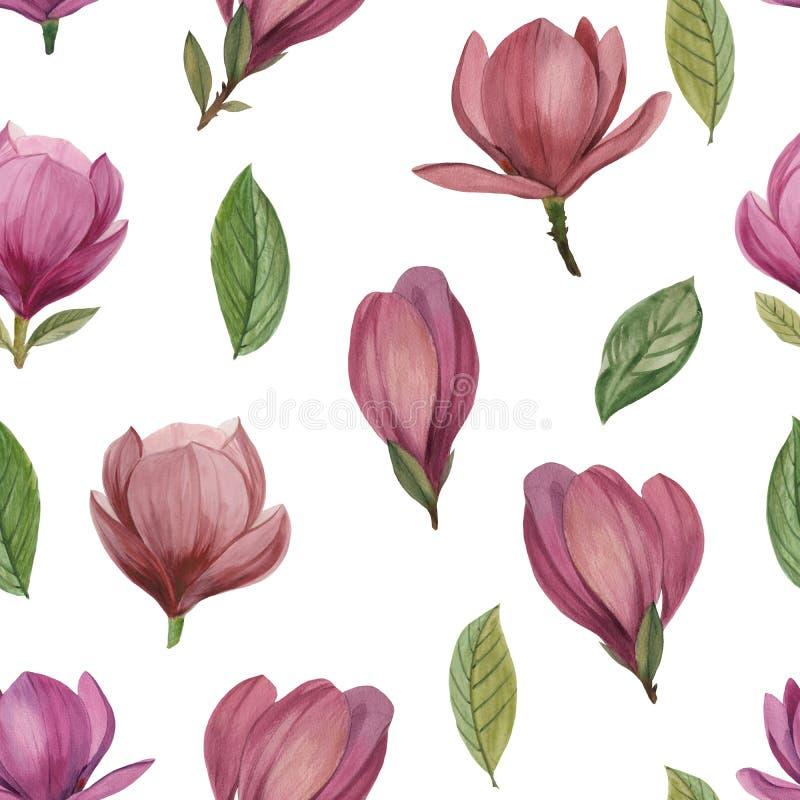 Modelo inconsútil de flores y de hojas de la magnolia stock de ilustración