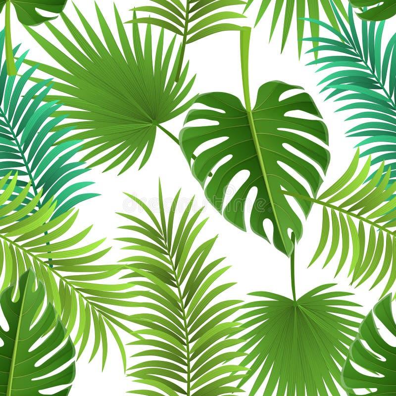 Modelo inconsútil de hoja de palma para el fondo tropical stock de ilustración