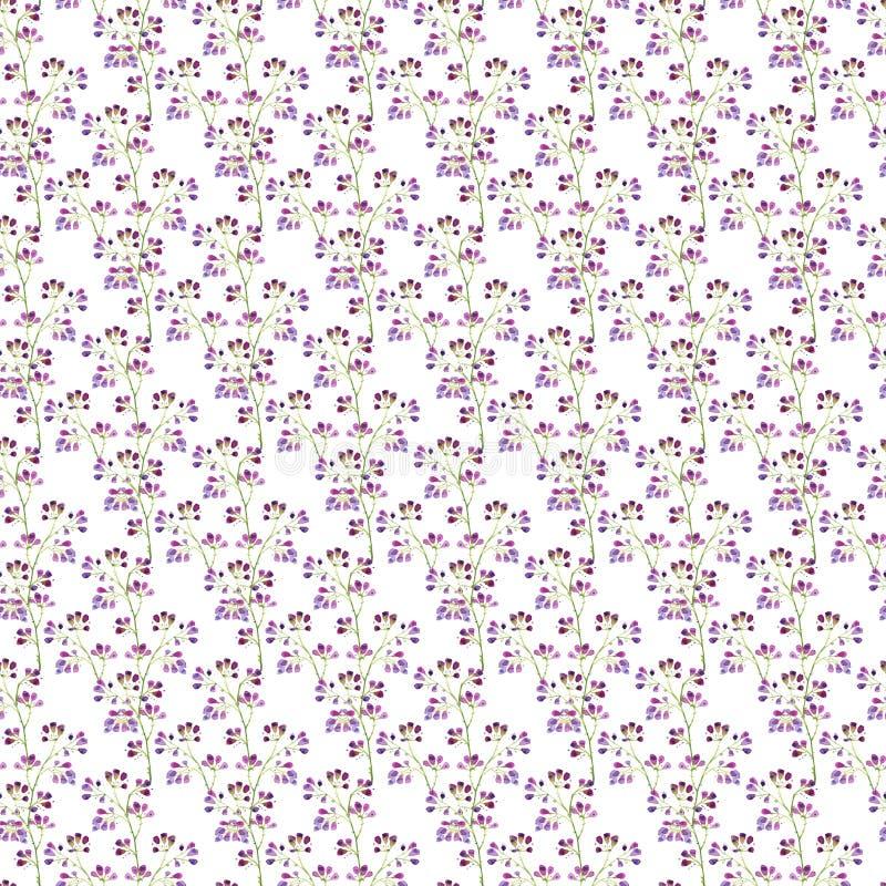 Modelo inconsútil de la acuarela, bayas púrpuras en las ramas en un fondo blanco fotografía de archivo