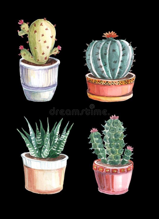 modelo inconsútil de la acuarela de cactus y de succulents watercolor fotos de archivo libres de regalías