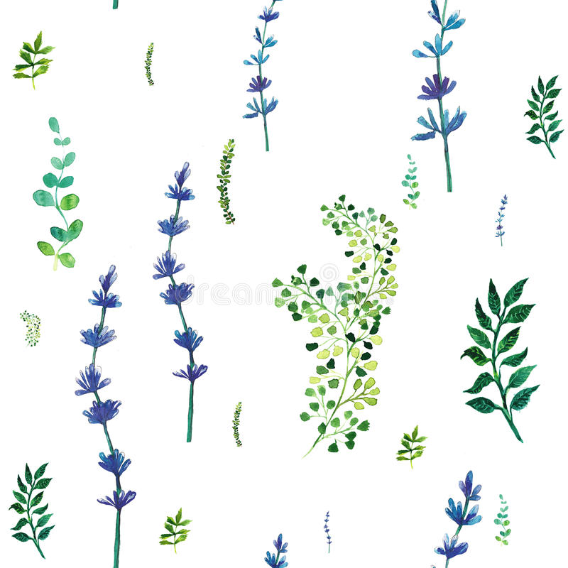 Modelo inconsútil de la acuarela con las hierbas y las hojas libre illustration
