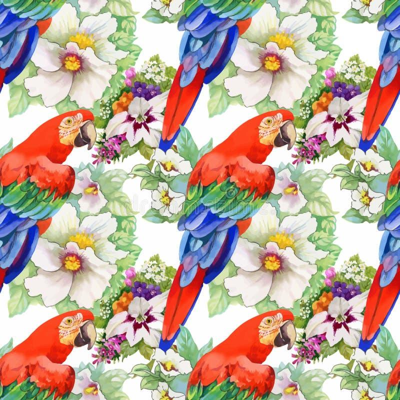 Modelo inconsútil de la acuarela con los loros y las flores blancas en el fondo blanco libre illustration