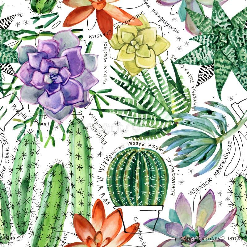 Modelo inconsútil de la acuarela con los succulents y los cactus ilustración del vector