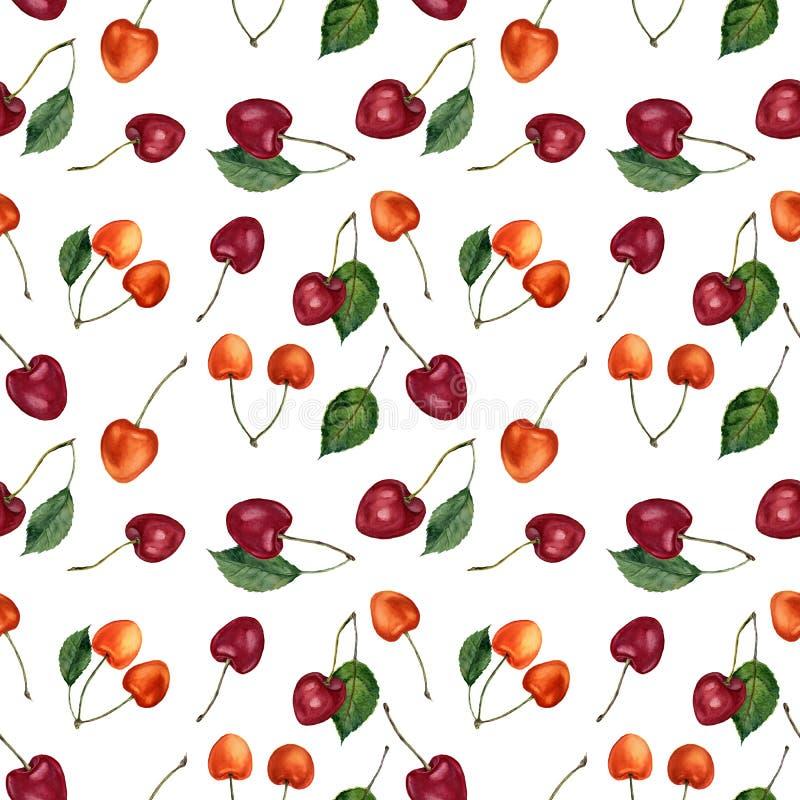 Modelo inconsútil de la acuarela de las bayas de la cereza del verano Cerezas de la acuarela aisladas en el fondo blanco Para el  ilustración del vector