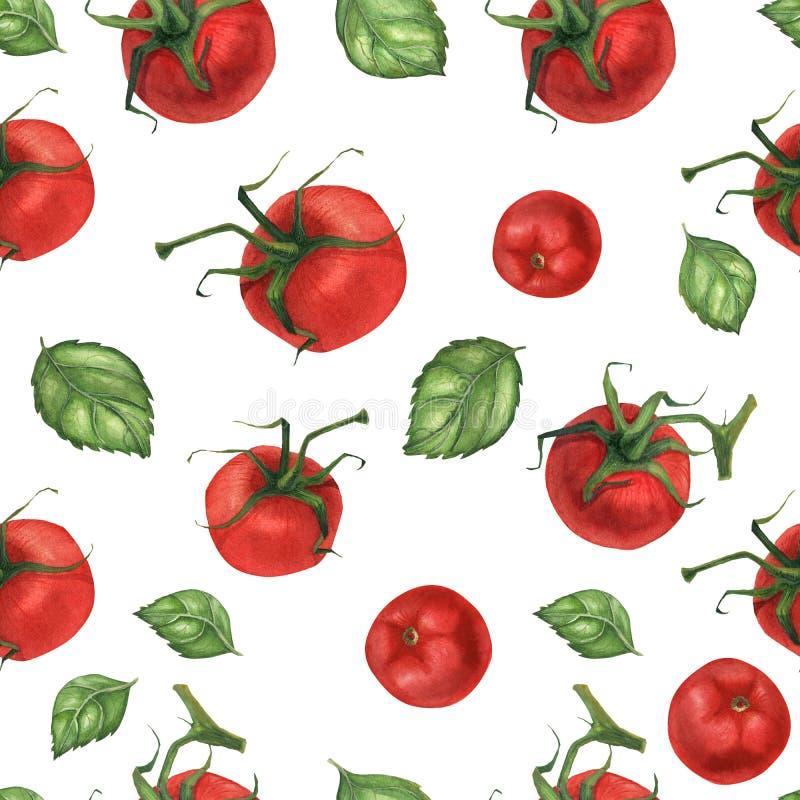 Modelo inconsútil de la acuarela del vegano con albahaca y el tomate libre illustration