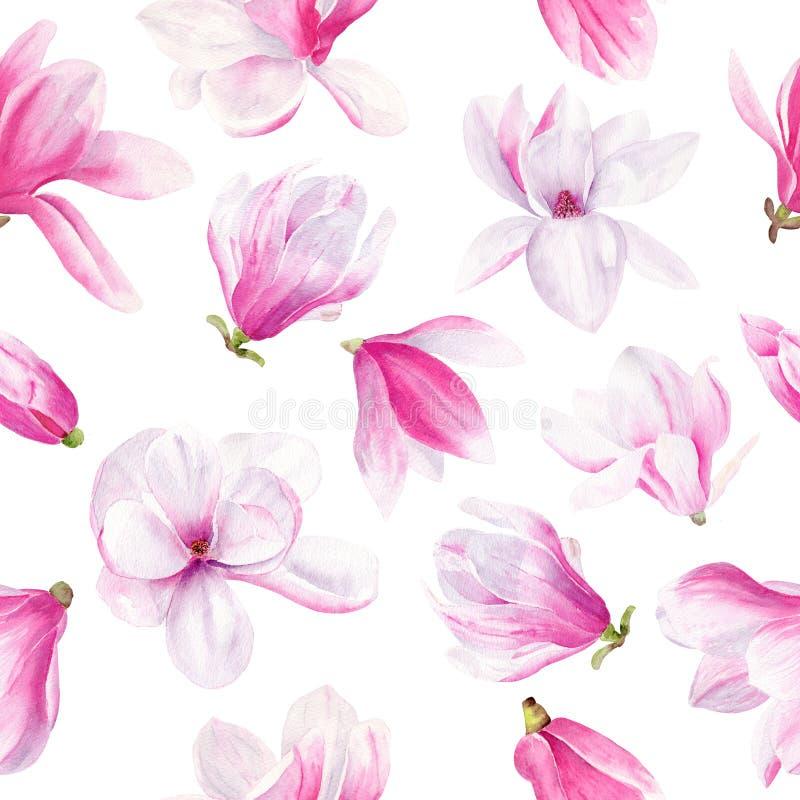 Modelo inconsútil de la acuarela exhausta de la mano de la flor de la magnolia stock de ilustración