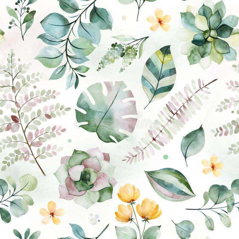 Modelo incons?til de la acuarela hermosa con las plantas, la palma y las hojas suculentas del helecho stock de ilustración