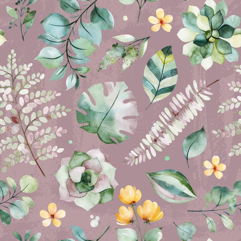 Modelo incons?til de la acuarela hermosa con las plantas, la palma y las hojas suculentas del helecho, ramas, flores libre illustration