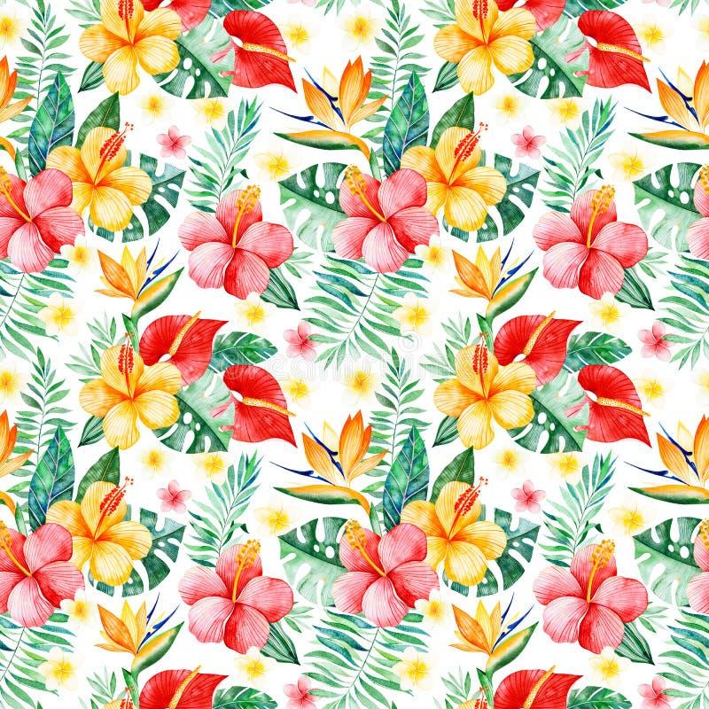Modelo inconsútil de la acuarela pintada a mano con las flores multicoloras, hojas tropicales, rama en el fondo blanco ilustración del vector