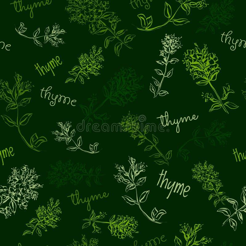 Modelo inconsútil de la hierba a mano con tomillo stock de ilustración