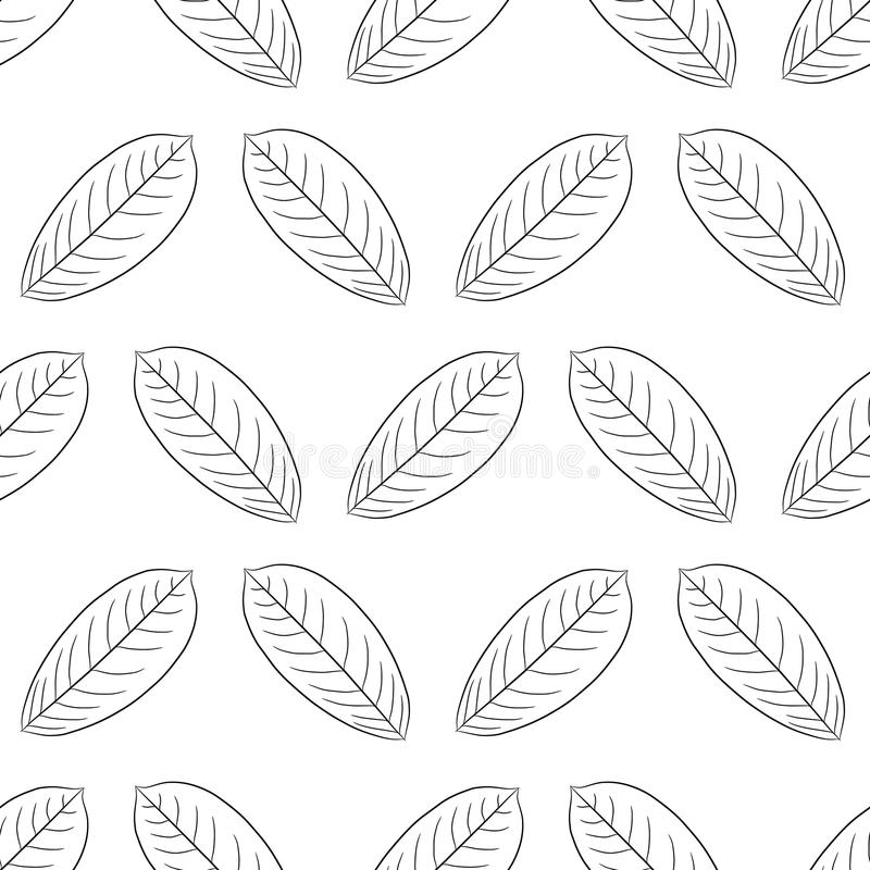 Modelo inconsútil de la hoja de la planta del cepillo del negro del contorno libre illustration