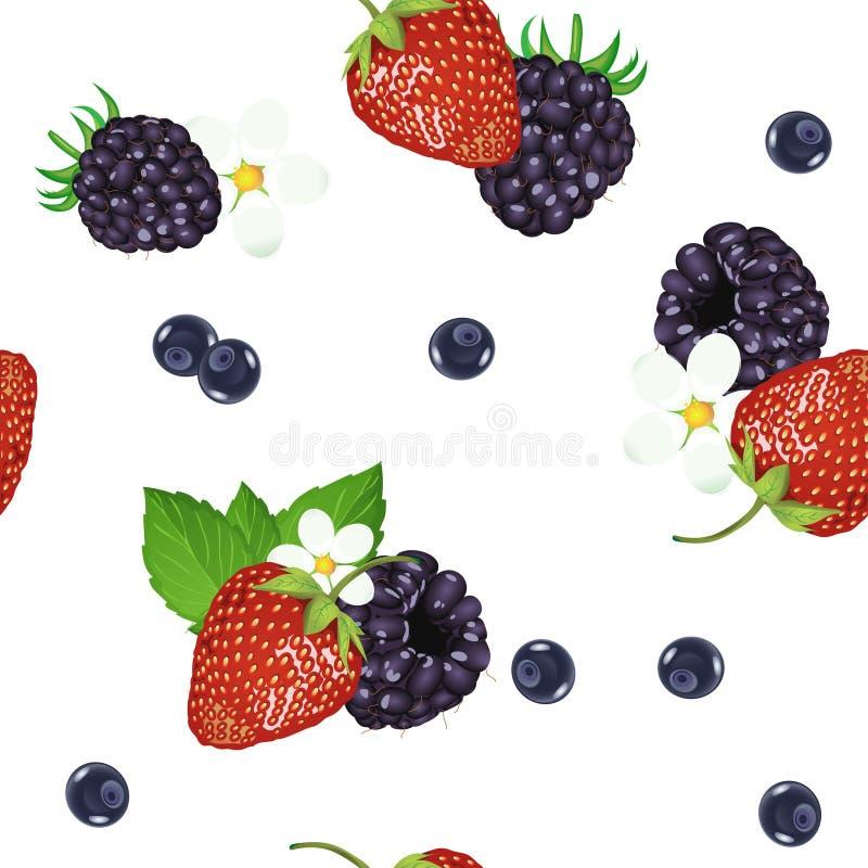 Modelo inconsútil de la imagen realista de bayas maduras deliciosas Fresas del vector Arándanos Zarzamoras ilustración del vector
