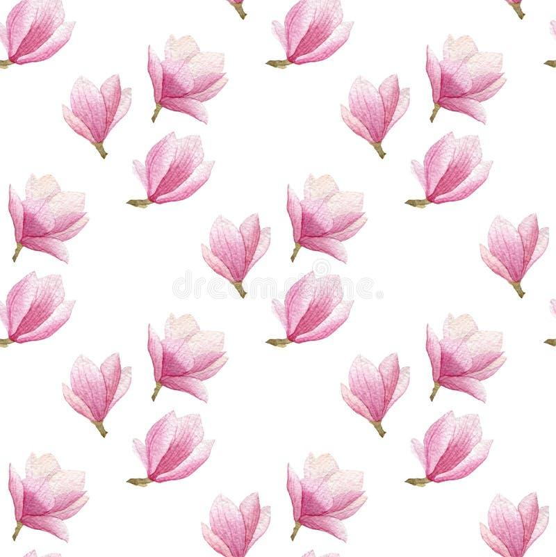 Modelo inconsútil de la magnolia de la acuarela aislado en el fondo blanco diseño floreciente del modelo de la primavera libre illustration