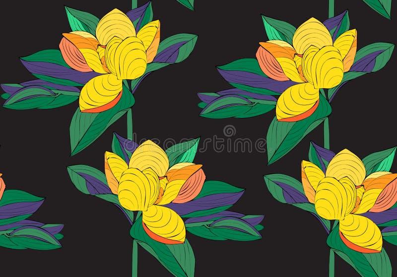 Modelo inconsútil de la magnolia Flor exótica Diseño del vector Textura floral Fondo floral del verano y de la primavera Estilo d libre illustration