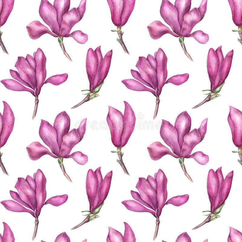 Modelo inconsútil de la magnolia rosada delicada, ejemplo de la acuarela ilustración del vector
