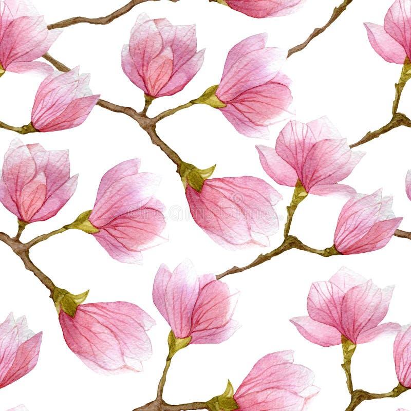 Modelo inconsútil de la primavera de la acuarela con el árbol floreciente de la magnolia aislado en el fondo blanco ilustración del vector
