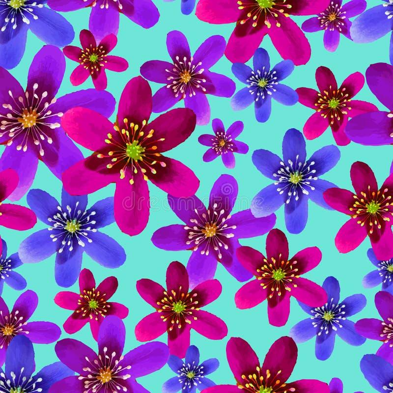 Modelo inconsútil de la primavera de la flor con hepatica ilustración del vector