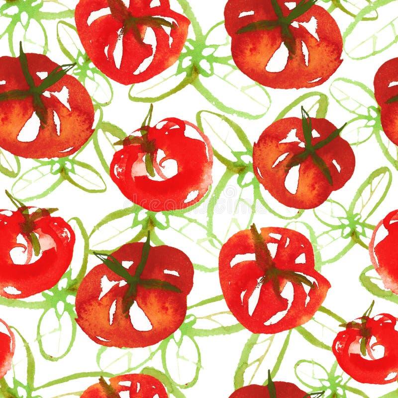 Modelo inconsútil de la superficie de la acuarela de los tomates maduros frescos y albahaca verde en el fondo blanco Tomates fres ilustración del vector