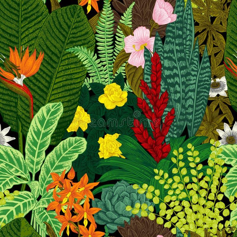Modelo inconsútil de la vendimia del vector Flores y plantas exóticas stock de ilustración
