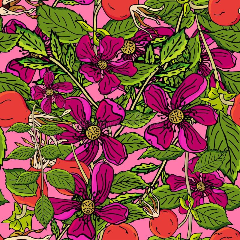 Modelo inconsútil de las bayas de Dogrose Las frutas color de rosa salvajes del fondo del vector con la hoja verde para el diseño ilustración del vector
