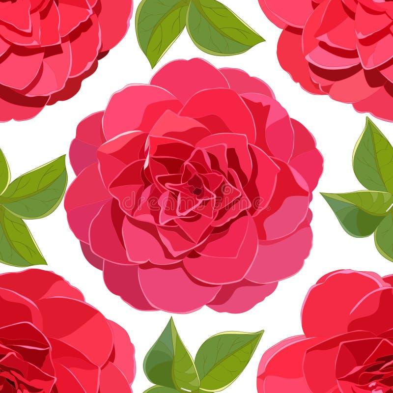 Modelo inconsútil de las flores rosadas brillantes de la camelia con las hojas verdes en el fondo blanco stock de ilustración