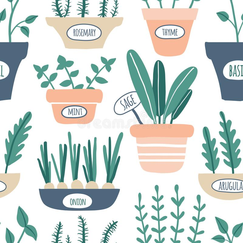 Modelo inconsútil de las hierbas de la cocina Crecimiento verde sabio, romero, menta, tomillo, arugula, cebolla con las etiquetas libre illustration
