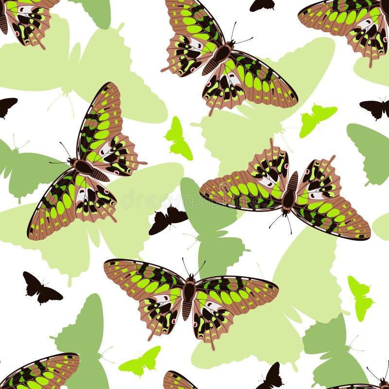 Modelo inconsútil de las mariposas stock de ilustración
