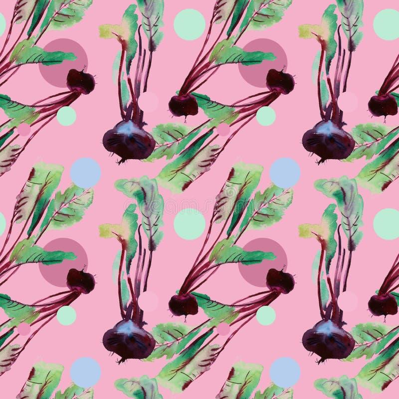 Modelo inconsútil de las remolachas, remolacha con los ejemplos de la acuarela, modelo de la remolacha con las hojas y raíz púrpu stock de ilustración