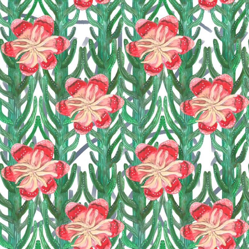 Modelo inconsútil de los cactus decorativos del aguazo y de las flores rojas y rosadas ilustración del vector