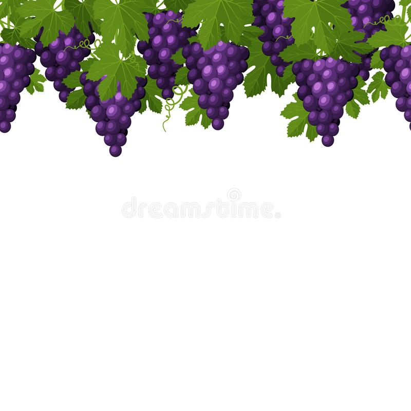 Modelo inconsútil de los manojos de uvas con las hojas libre illustration