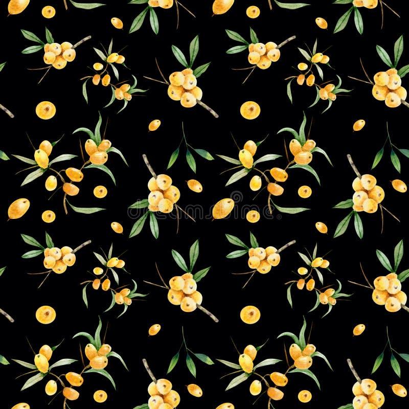 Modelo inconsútil decorativo de ramas y de bayas de espino amarillo stock de ilustración
