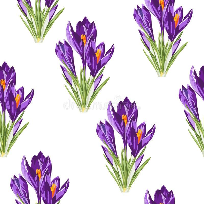 Modelo inconsútil del azafrán del ramo violeta de las flores Ejemplo del estilo de la acuarela ilustración del vector