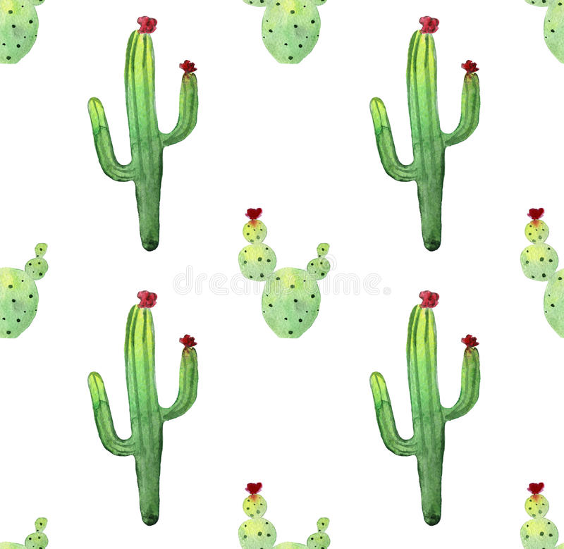 Modelo inconsútil del cactus de la acuarela Succulents vibrantes coloridos del cactus libre illustration