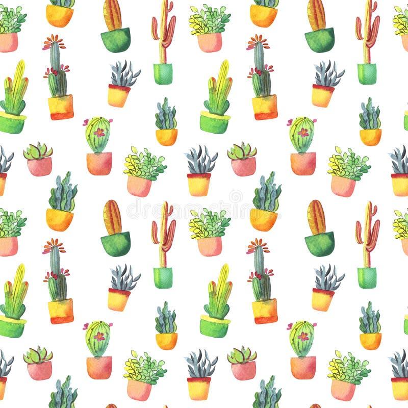 Modelo inconsútil del cactus de la acuarela Cactus vibrante colorido en potes y otros succulents ilustración del vector
