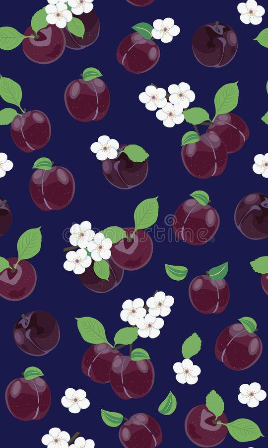 Modelo inconsútil del ciruelo púrpura fresco con la flor de cerezo blanca en fondo azul stock de ilustración