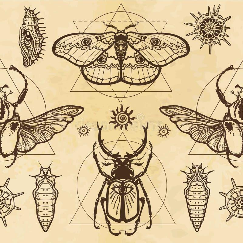 Modelo inconsútil del color: imagen de una mariposa, larva, insecto Goliat, insecto de cuernos, geometría sagrada stock de ilustración