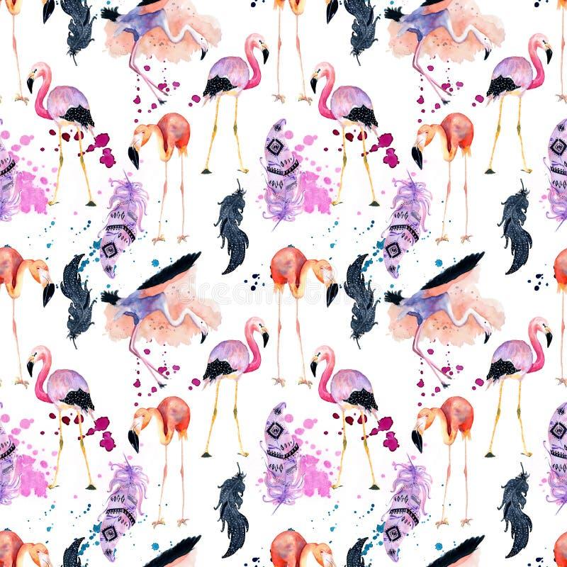 Modelo inconsútil del flamenco de la acuarela aislado en el fondo blanco libre illustration