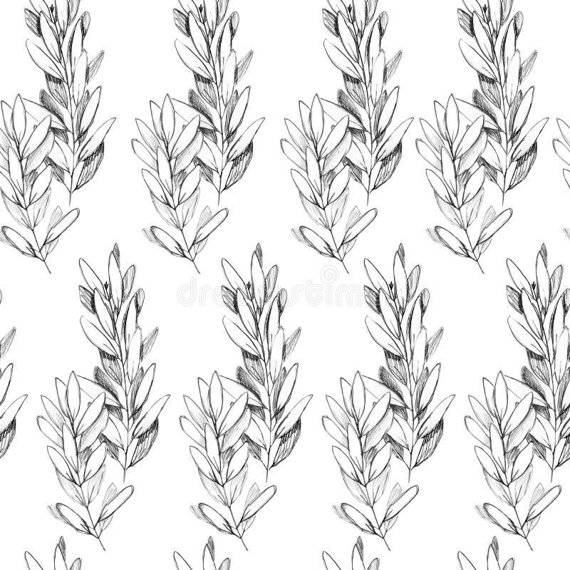 Modelo inconsútil del grayscale exhausto de la pluma de la mano libre illustration