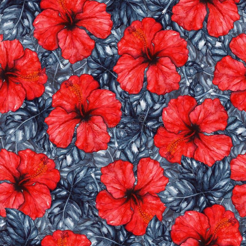 Modelo inconsútil del hibisco de la acuarela del karkade de la planta exótica tropical roja de la flor ilustración del vector