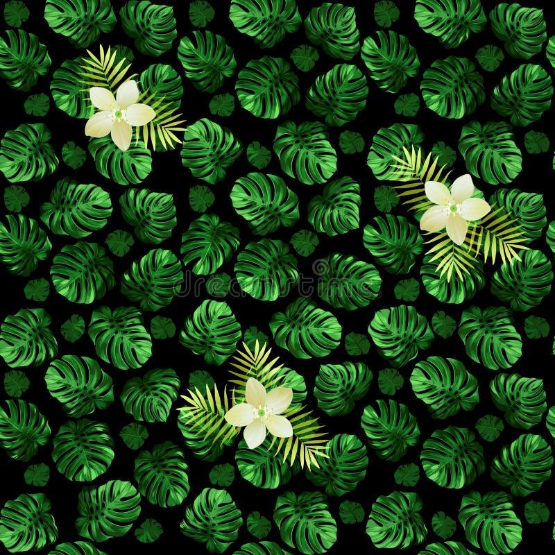 Modelo inconsútil del monstera de las hojas y de flores exóticas Fondo verde oscuro con los flores ilustración del vector
