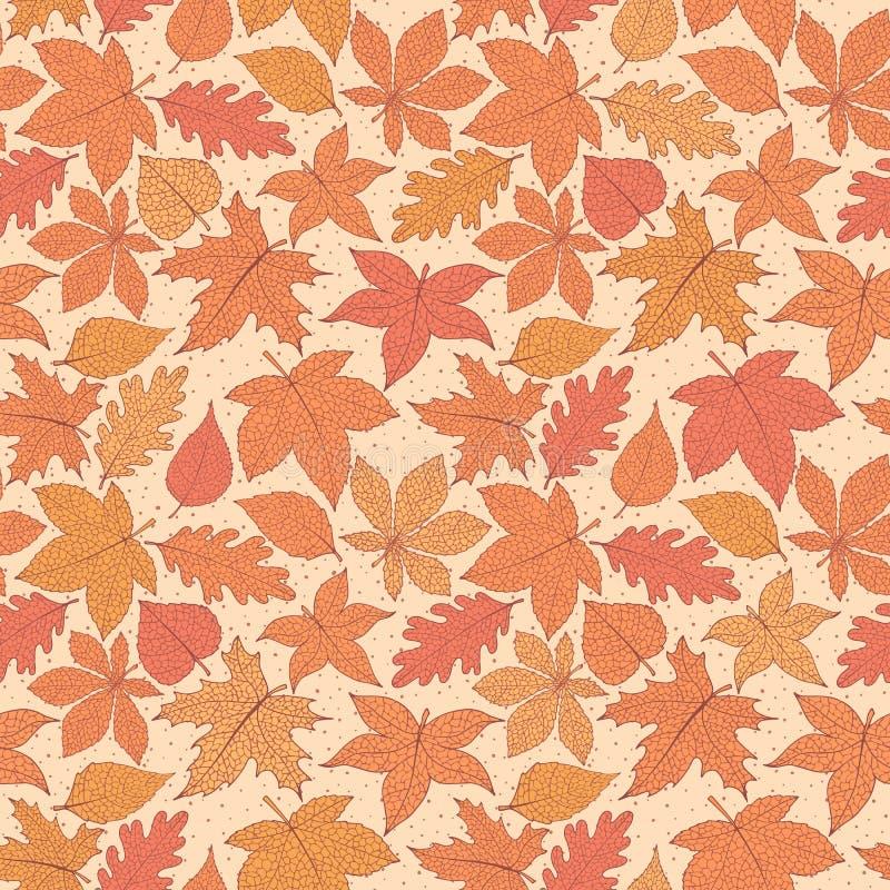 Modelo inconsútil del otoño del vector con las hojas de la castaña del roble, del álamo, de la haya, del arce, del álamo temblón  stock de ilustración