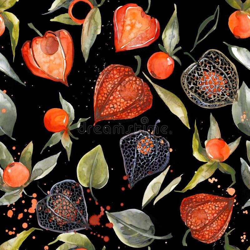 Modelo inconsútil del physalis de la acuarela ejemplo de la baya del otoño libre illustration