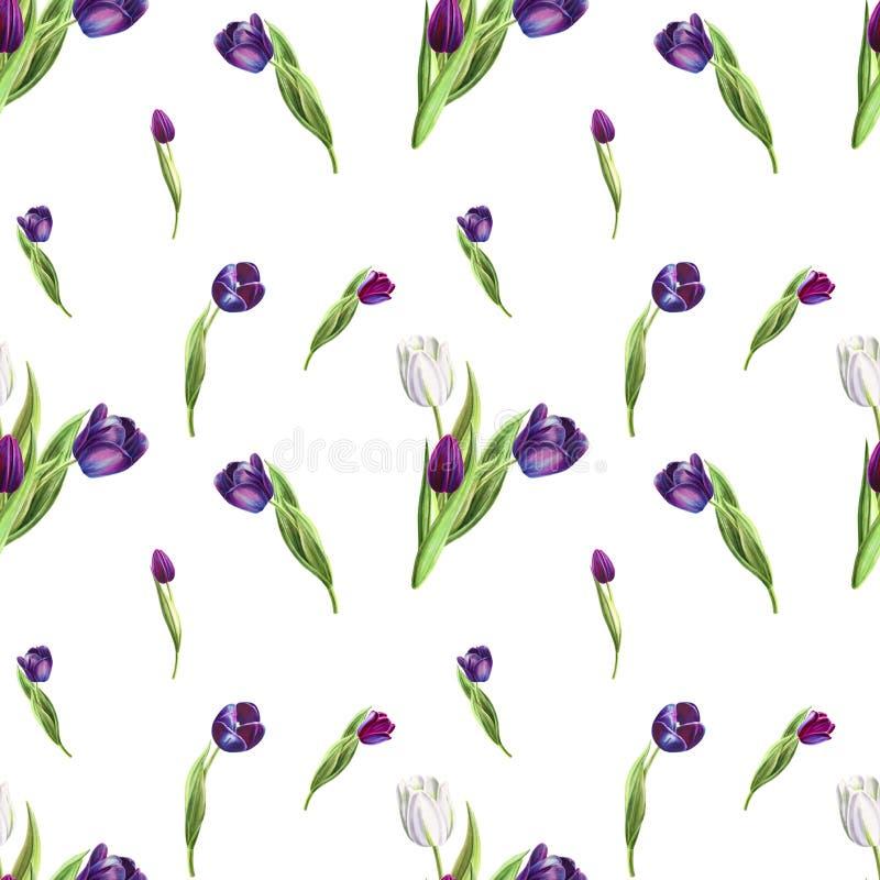 Modelo inconsútil del tulipán blanco y negro hermoso Dibujo del marcador Pintura de la acuarela libre illustration