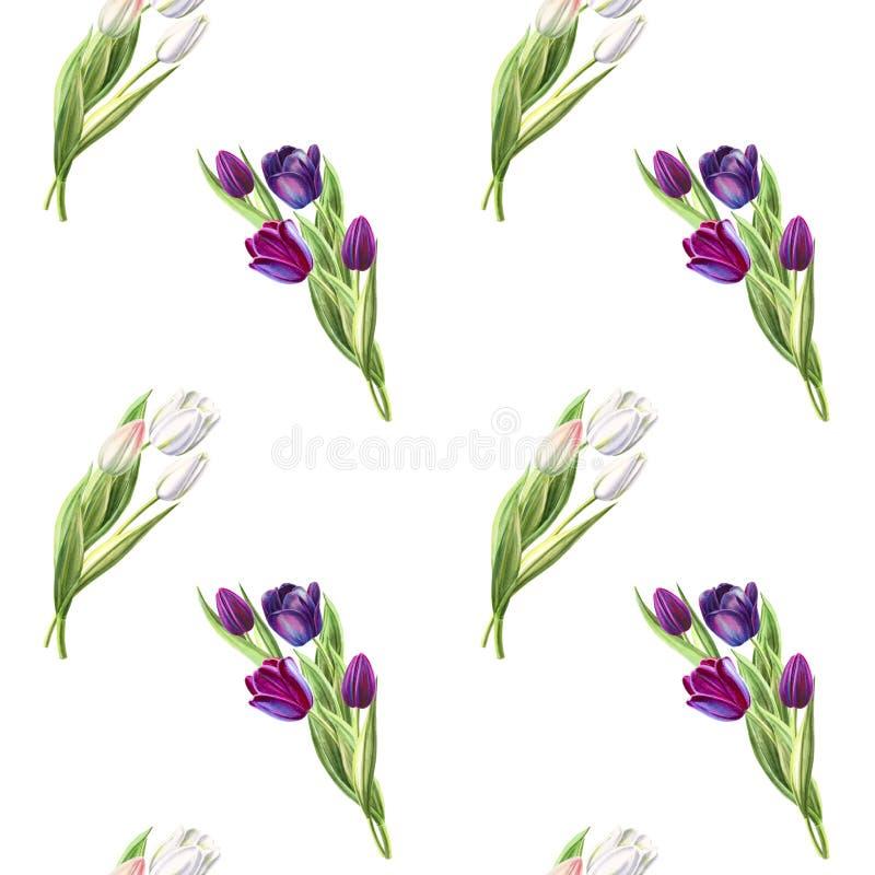 Modelo inconsútil del tulipán blanco y negro hermoso Dibujo del marcador Pintura de la acuarela ilustración del vector