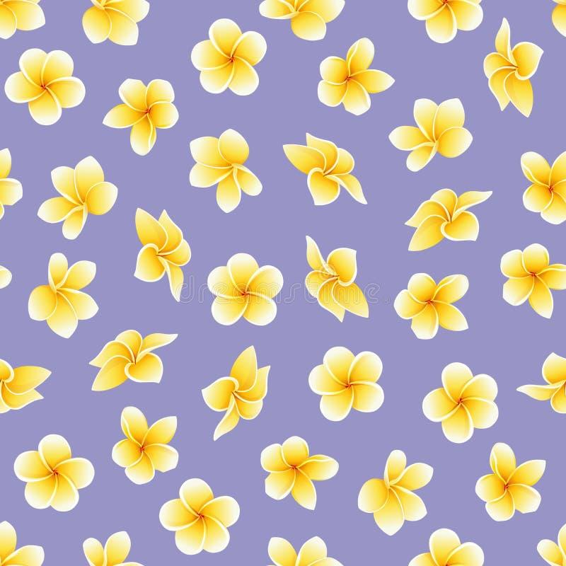 Modelo inconsútil del vector con la flor del Plumeria o el Frangipani en el violáceo foto de archivo libre de regalías