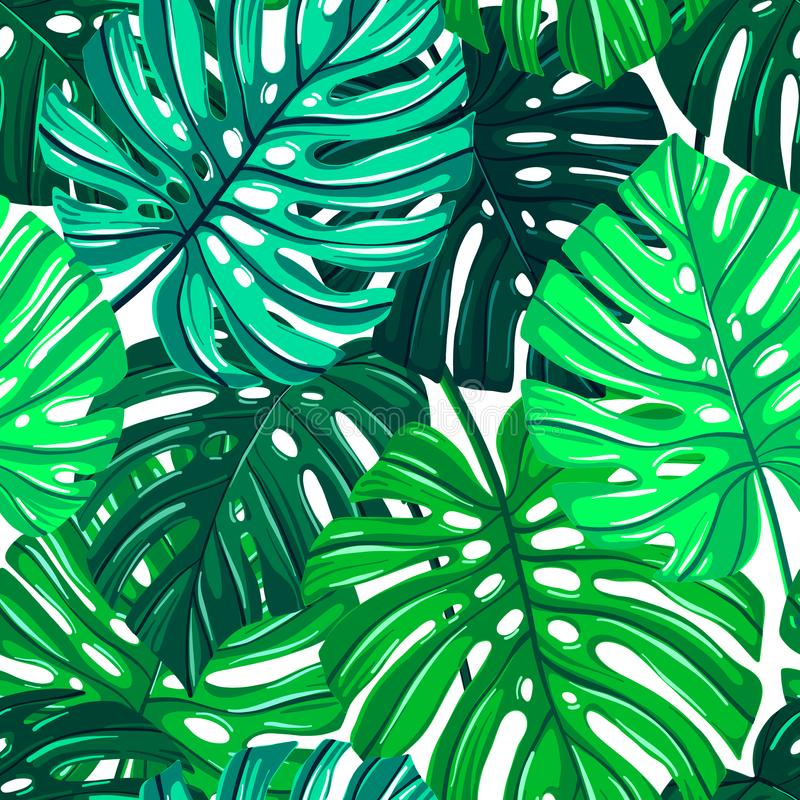 Modelo inconsútil del vector con las hojas tropicales Textura de las hojas de Monstera Fondo repetible floral de la selva stock de ilustración