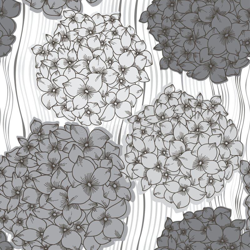 Modelo inconsútil del vector con las hortensias Parte posterior floral monocromática ilustración del vector