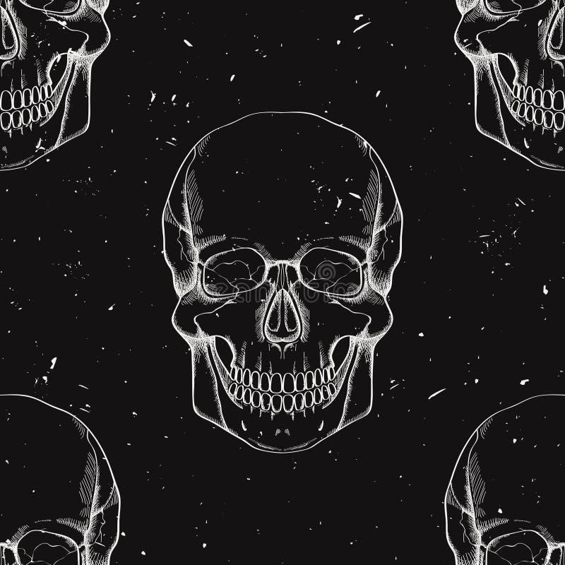 Modelo inconsútil del vector con los cráneos humanos libre illustration