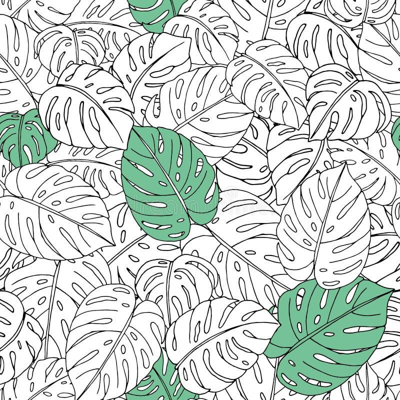 Modelo inconsútil del vector de las hojas exhaustas del monstera de la mano en el fondo blanco libre illustration